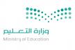 تنظيمات العمل لصلاحيات فصل المدارس